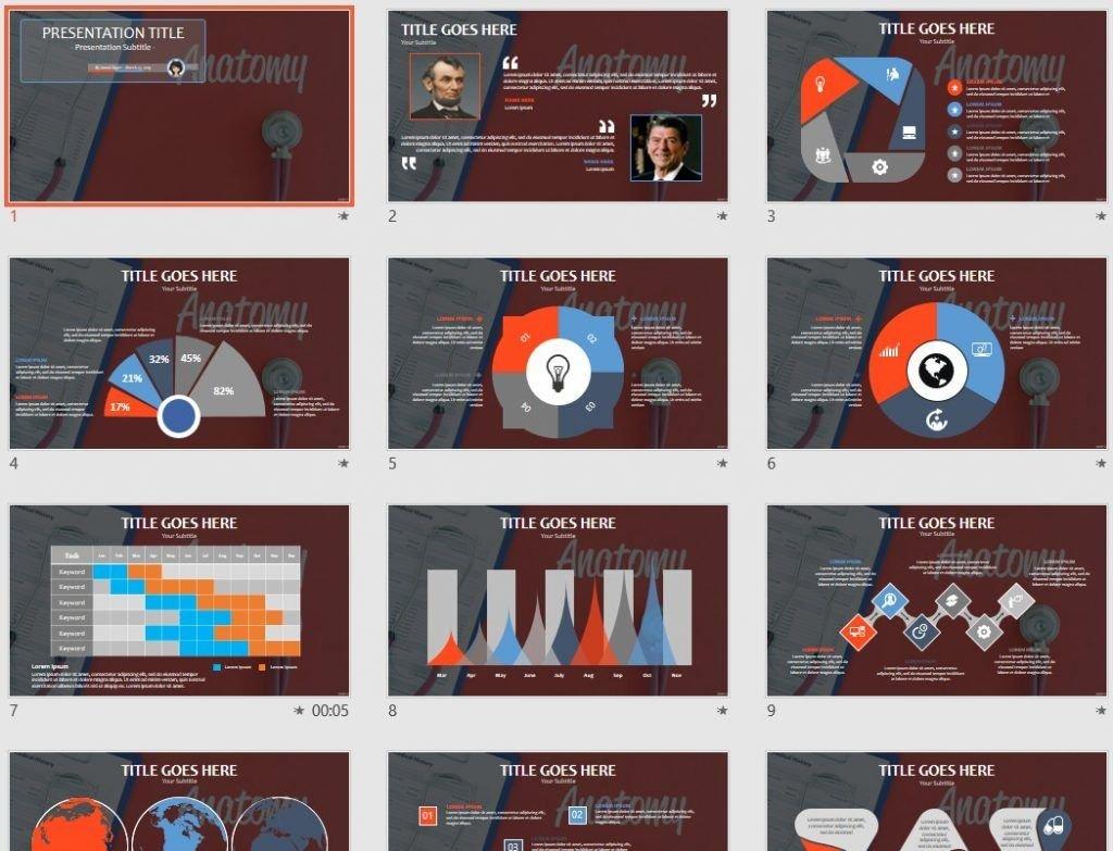 anatomy PowerPoint by SageFox